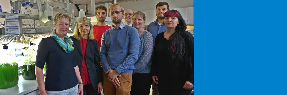 Mikroalgenforschung in Sachsen-Anhalt: Führende Institutionen vernetzen sich